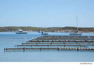 Oyster Lease in Bay
